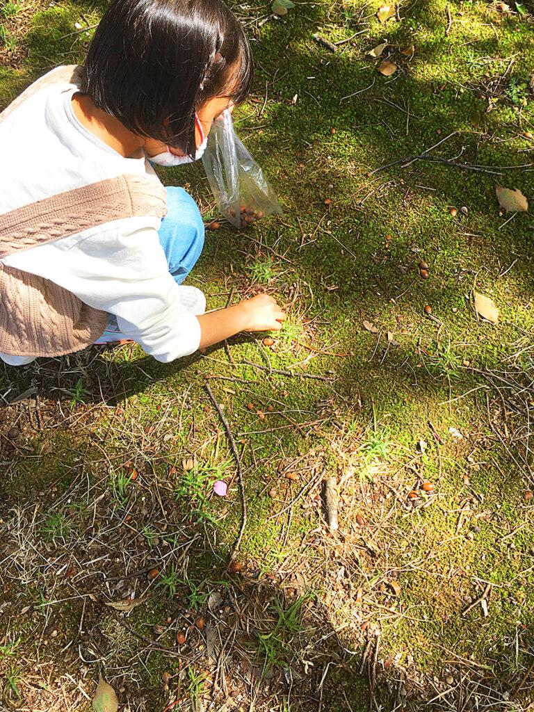 出川南公園12