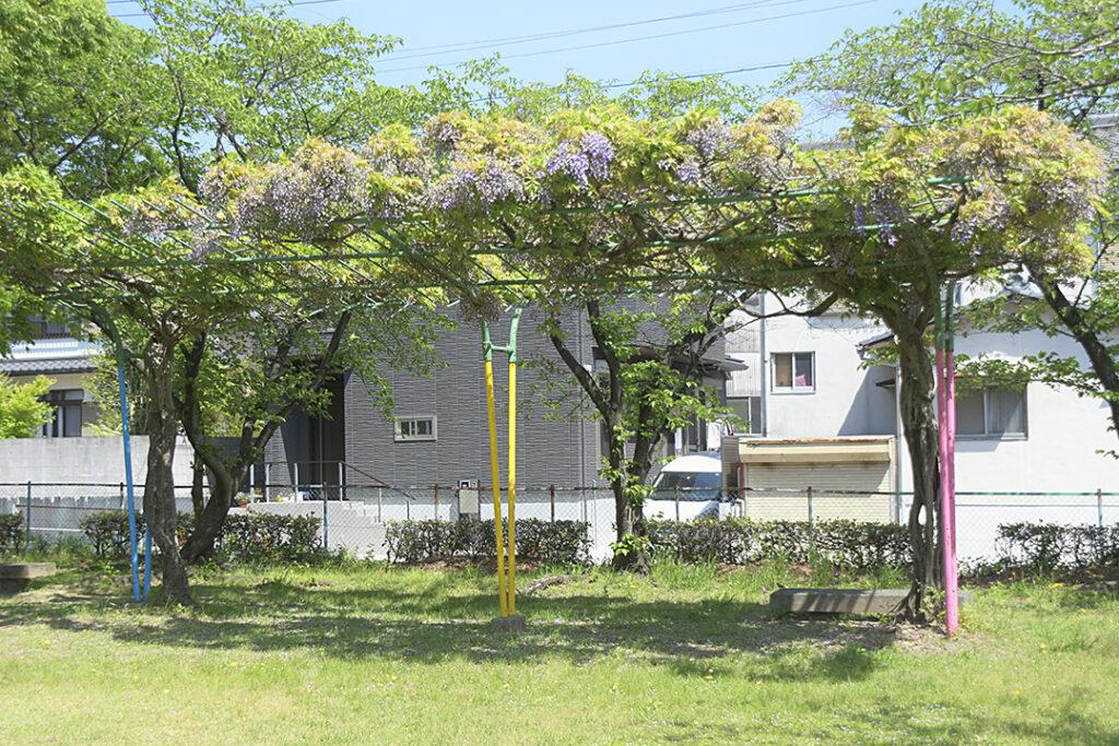 前田公園18